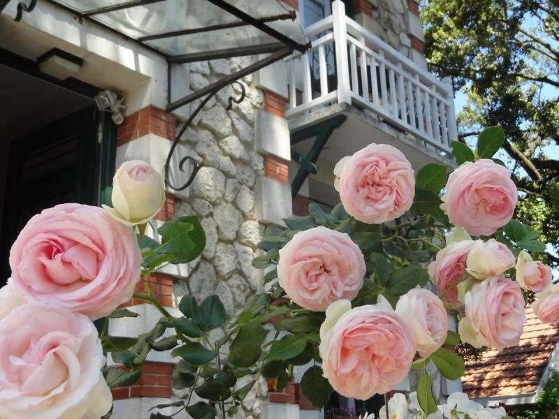 villa frivole bnb chambres dhotes 3 roses